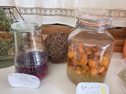 梅ぼしと梅シロップ・ブルーベリーシロップを作りました